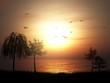 3D silhouette of a tree landscape against a sunset ocean landscape