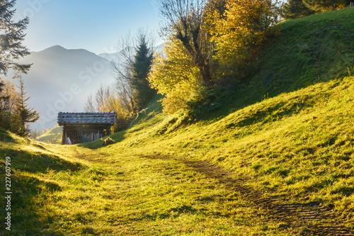 Leinwandbild Motiv Feldweg zu einer  Almhütte in Tirol