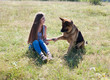 Leinwanddruck Bild - woman plays with the dog German Shepherd when training