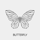 Geometric butterfly. Polygonal linear abstract animal. Vector illustration