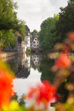 View of beautiful half-timbered houses and canal seen through flowers from Strasbourg France