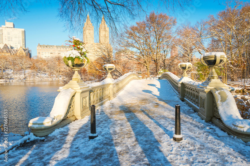Foto Murales Central Park. New York. USA in winter covered with snow. Bow bridge.