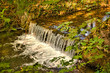 Creek with a small waterfall - 227665372