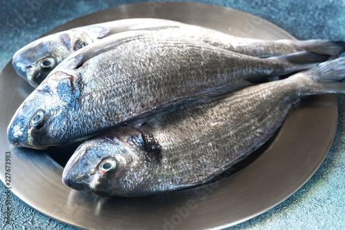 Leinwandbild Motiv Sea bream (dorada) fish