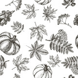 Decorative seamless pattern with Ink hand drawn autumn maple, chestnut, oak leaves, ripe pumpkin and a bunch of rowanberry.  Botanical elements texture for your design. Vector illustration. - 227698548