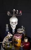 Human skull  head - 227703148