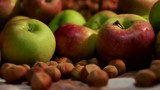 apples and hazelnuts detail shot on a table with cloth defocus - 227710724