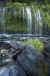 Mossbrae falls in northern Califnornia - 227710915