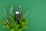 Peppermint oil. Pure Peppermint Essential Oil in a glass brown bottle with a pipette and  sprigs of mint on a dark green background.Organic Pure Natural Oils - 227729536