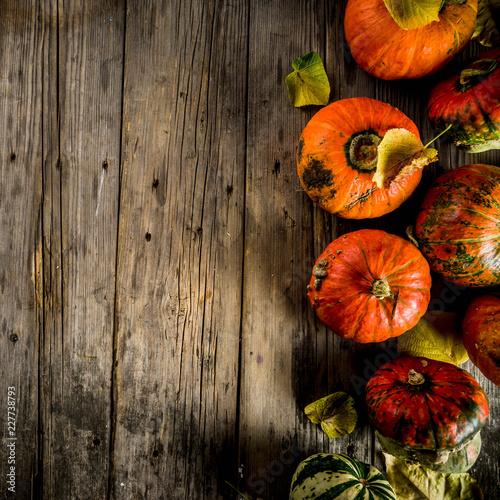 Leinwanddruck Bild Autumn pumpkins background