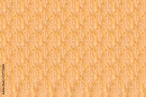 Foto Murales Close up of yellow autumn leaf pattern, background photo