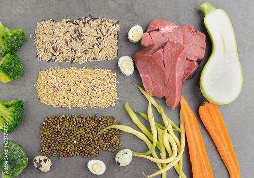 Leinwanddruck Bild Natural raw ingredients for pet food on grey background. Flat lay.