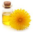 Medicinal dandelion with essential oil
