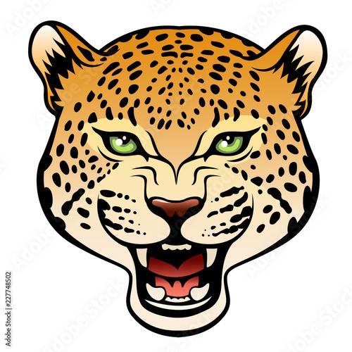 head of leopard buy photos ap images detailview rh apimages com Leopard Face Clip Art leopard head clip art logo