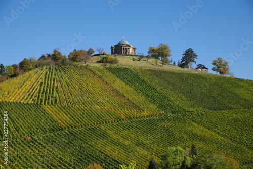 Uprawa winorośli i wytwórca win