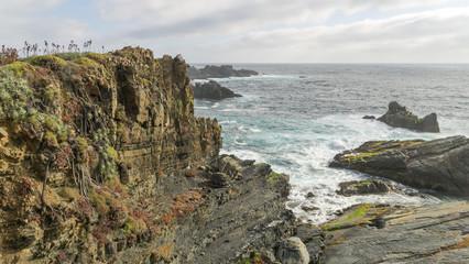 coast landscape ocean and rocks © DARIO