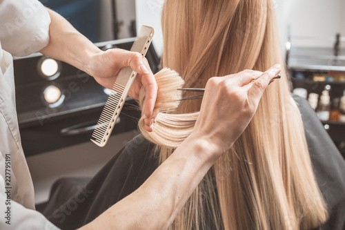 fototapeta na ścianę Hairdresser is cutting long hair in hair salon