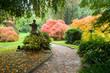 Autumn. Yellow and  orange  leaves.  Japanese Maple.  Japanese garden. Leverkusen