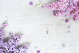 Fresh lilac twigs with flowers frame over white wooden background with copy space, flat lay top view floral border - 227823333