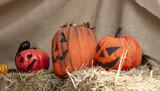 Pumpkins halloween decoration - 227826159
