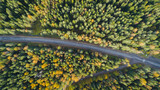 Aerial view of a car on the road. Autumn landscape countryside. Aerial photography of autumn forest with a car on the road. Captured from above with a drone. Aerial photo. Quadcopter. Aerial car view