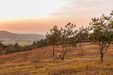 Fototapeta  - Jesienny zachód słońca nad polaną, Chęciny © olekgraf