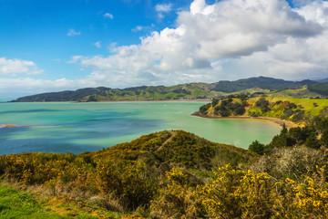 Landscape Scenery of Waitawa Regional Park, New Zealand © Sorang