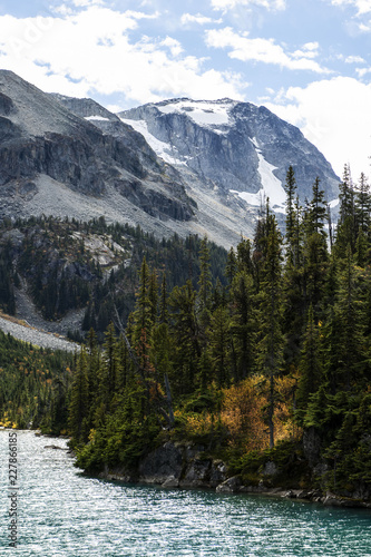 Foto Murales upper joffre lake detail view with pine trees and snow caped mountains at british columbia canada