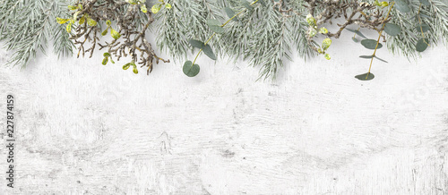 winter or Christmas themed banner / background with a border of green fir tree twigs, frosted greenery and eucalyptus leaves on a white wooden board, copyspace for your text, flat lay / top view - 227874159