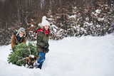 Grandfather and small girl getting a Christmas tree in forest. Copy space. - 227889916