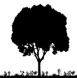 vector, isolated silhouette tree