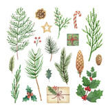 Watercolor vector Christmas set with evergreen coniferous tree branches, berries and leaves. - 227892906