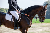 Dressage rider and her horse all set to go in the ring - 227892962