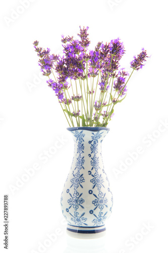 Bouquet Lavender in vase on white background - 227893788