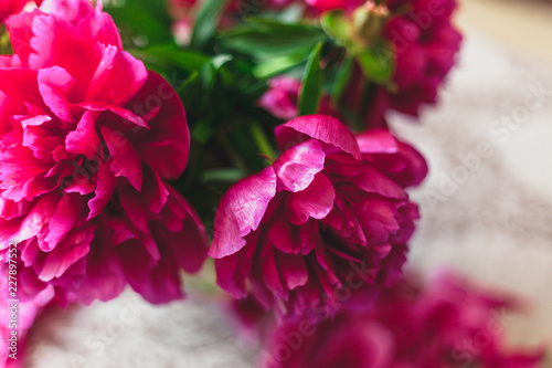 Foto Murales Opened red peony bud