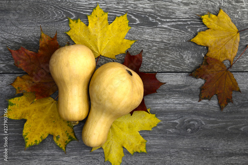 Foto Murales Yellow pumpkin on a background of autumn colored leaves