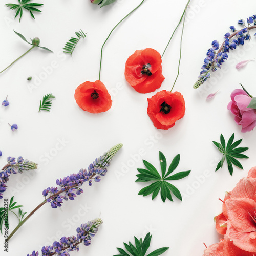 Floral pattern white background Flat lay top view Pattern flowers - 227912358