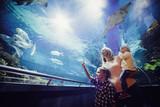Happy family looking at fish tank at the aquarium - 227924904