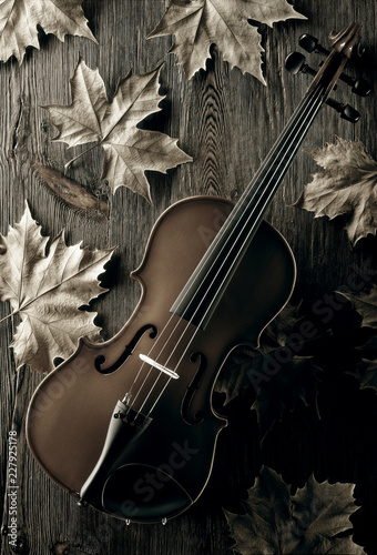 violin on wooden table with fall leaves © MIGUEL GARCIA SAAVED