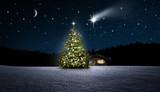 Weihnachtsbaum im Wald - 227928108