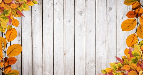 Autumn leaves border with bright wood copy space - 227944939