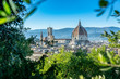 Quadro Panoramic view of the old town of Florence, Italy during the sunset with the view of famous Santa Maria del Fiore Cathedral through a bunch of trees.