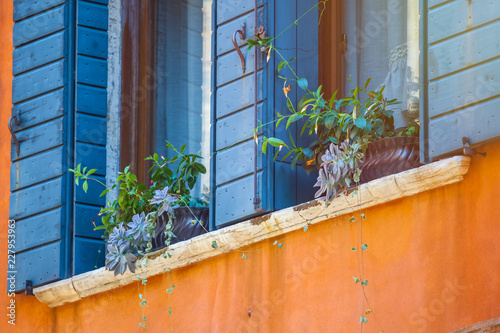 Foto Murales houses with flowers on the windows in venice