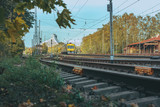 Railway infrastructure in colorful autumn colors in Riga, Latvia. Electric train riding through colorful birch alley.