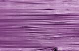 Crumpled transparent plastic surface in purple color. - 227956529