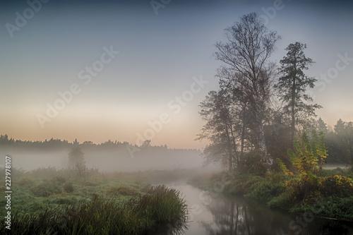 Foto Murales Rzeka Grabia w centralnej Polsce zaraz po wschodzie słońca otulona poranna mgłą