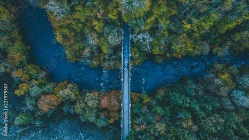 Most na jesieni