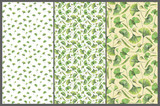 Set with three seamless patterns with green leaves of ginkgo biloba. Hand drawn illustration with colored pencils. Botanical natural design for textiles, interior or some background. - 227983102