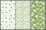 Set with three seamless patterns with green leaves of ginkgo biloba. Hand drawn illustration with colored pencils. Botanical natural design for textiles, interior or some background. - 227983134