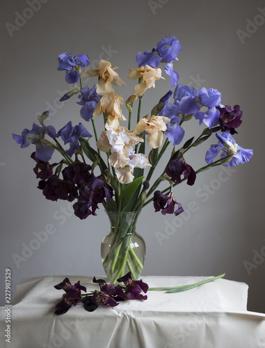 Foto Murales Beautiful bouquet of flowers iris in a glass vase on a gray background.